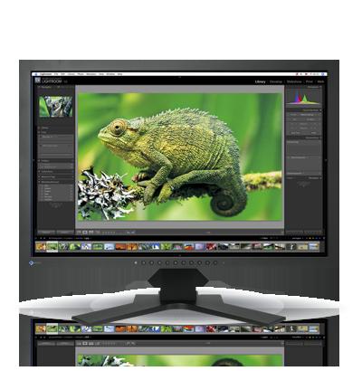 Zdjęcie monitora EIZO ColorEdge CG241W
