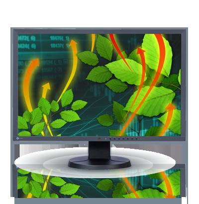 Zdjęcie monitora EIZO FlexScan EV2416W