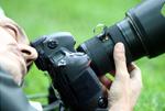 Wybór monitora do fotografii