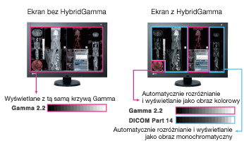 RadiForce RX440 Hybrid Gamma