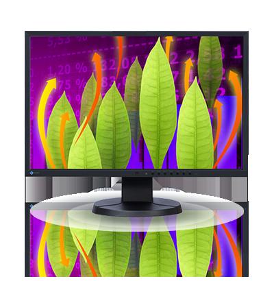 Zdjęcie monitora EIZO FlexScan EV2216W