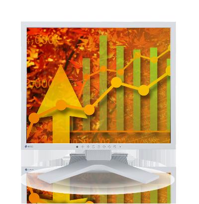 Zdjęcie monitora EIZO FlexScan S1923