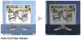 sensor_auto_ecoview