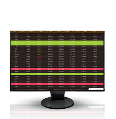 Zdjęcie monitora EIZO FlexScan EV2456