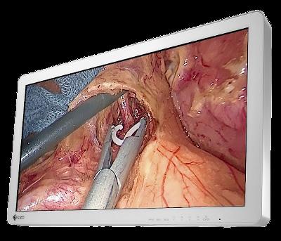 Zdjęcie monitora EIZO CuratOR EX2721