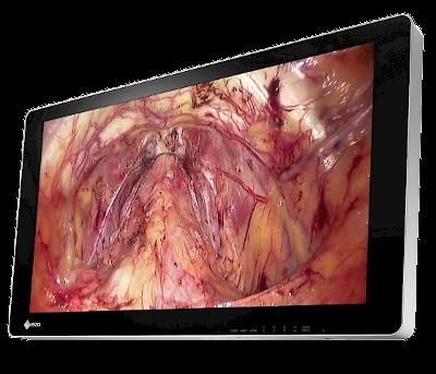Zdjęcie monitora EIZO CuratOR EX3141-3D